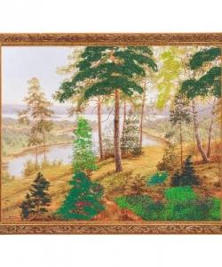 Картина  Русский ландшафт  багет №5 (40х50 см) B14503