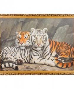 Картина  Тигры  багет №7 (50х70 см) Sl256