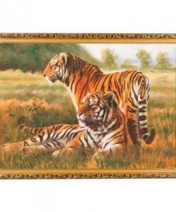 Картина  Два тигра  багет №7 (50х70 см) В65717
