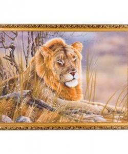 Картина  Лев  багет №7 (50х70 см) ВЯ1